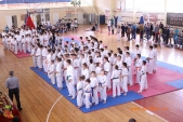 Открытые соревнования Волгоградской области по Киокусинкай МОЛОДОЕ ПОКОЛЕНИЕ-2017  (рис.33)