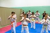 Общая тренировка с каратистами из города Волжского сентябрь 2019 (рис.9)