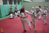 Совместная тренировка каратистов СК УРАКЕН с каратистами из Кировского района (рис.19)