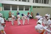 Совместная тренировка каратистов СК УРАКЕН с каратистами из Кировского района (рис.15)