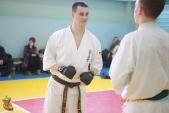Общая тренировка киокусинкай в городе Волжском (рис.24)