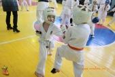 Общая тренировка киокусинкай в городе Волжском (рис.31)