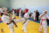 Общая тренировка киокусинкай в городе Волжском (рис.38)