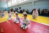 Общая тренировка киокусинкай в городе Волжском (рис.45)