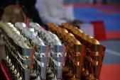 Первенство Волгограда по Киокусинкай в дисциплинах Кумитэ и Ката (рис.11)