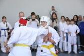 Первенство Волгограда по Киокусинкай в дисциплинах Кумитэ и Ката (рис.29)