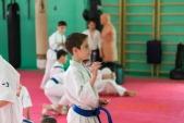 Фото 1-го Летнего лагеря киокусинкай спортивного клуба УРАКЕН (рис.10)
