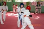 Фото 1-го Летнего лагеря киокусинкай спортивного клуба УРАКЕН (рис.22)