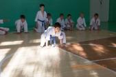 Фото 1-го Летнего лагеря киокусинкай спортивного клуба УРАКЕН (рис.8)
