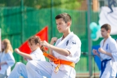 Выступления Федерации Уракен Карате на открытии НОВОЙ спортивной площадки Лицея 9  (рис.11)
