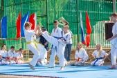 Выступления Федерации Уракен Карате на открытии НОВОЙ спортивной площадки Лицея 9  (рис.15)