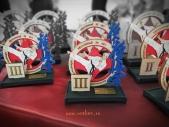 Зональные соревнования по Киокусинкай Южного и Северо-Кавказского федеральных округов (рис.2)