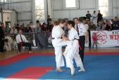 Зональные соревнования по Киокусинкай Южного и Северо-Кавказского федеральных округов (рис.28)