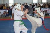 Зональные соревнования по Киокусинкай Южного и Северо-Кавказского федеральных округов (рис.31)