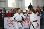 Зональные соревнования по Киокусинкай Южного и Северо-Кавказского федеральных округов (рис.33)