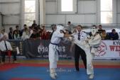 Зональные соревнования по Киокусинкай Южного и Северо-Кавказского федеральных округов (рис.4)