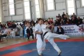 Зональные соревнования по Киокусинкай Южного и Северо-Кавказского федеральных округов (рис.5)