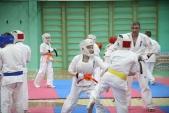 Совместная тренировка с каратистами из клуба Дзаншин в лицее 9 (рис.10)