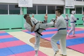 Совместная тренировка с каратистами из клуба Дзаншин в лицее 9 (рис.20)