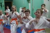 Совместная тренировка с каратистами из клуба Дзаншин в лицее 9 (рис.7)