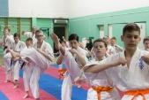 Совместная тренировка с каратистами из клуба Дзаншин в лицее 9 (рис.8)