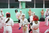 Боевая спарринговая тренировка в Лицее 9 Дзержинского района города Волгограда (рис.8)