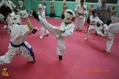 Тренировка спортсменов СК УРАКЕН Лицея № 9 с каратистами из Волжского (рис.15)