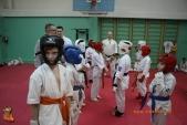 Тренировка спортсменов СК УРАКЕН Лицея № 9 с каратистами из Волжского (рис.18)