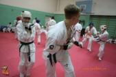 Тренировка спортсменов СК УРАКЕН Лицея № 9 с каратистами из Волжского (рис.29)