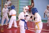 Боевая тренировка киокусинкай в Волжском в честь ДНЯ РОССИИ 10 июня 2018 (рис.13)