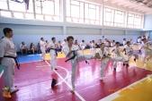 Боевая тренировка киокусинкай в Волжском в честь ДНЯ РОССИИ 10 июня 2018 (рис.15)