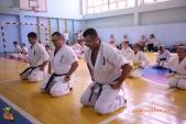 Боевая тренировка киокусинкай в Волжском в честь ДНЯ РОССИИ 10 июня 2018 (рис.4)