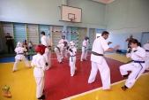 Боевая тренировка киокусинкай в Волжском в честь ДНЯ РОССИИ 10 июня 2018 (рис.5)