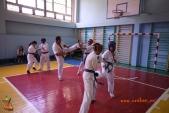 Боевая тренировка киокусинкай в Волжском в честь ДНЯ РОССИИ 10 июня 2018 (рис.6)