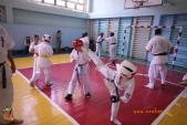 Боевая тренировка киокусинкай в Волжском в честь ДНЯ РОССИИ 10 июня 2018 (рис.7)