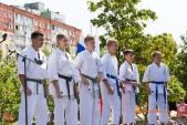 Показательные выступления каратистов Волгоградской Федерации Каратэ (рис.15)