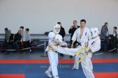 Учебно-тренировочные состязания по киокусинкай 6 декабря (рис.11)