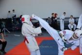 Учебно-тренировочные состязания по киокусинкай 6 декабря (рис.3)