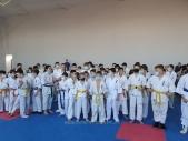 Учебно-тренировочные состязания по киокусинкай 29 ноября (рис.4)