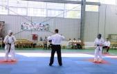 Чемпионат и первенство Волгоградской области по каратэ кекусинкай (рис.11)