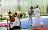 Чемпионат и первенство Волгоградской области по каратэ кекусинкай (рис.3)