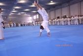 Зимняя школа Западно-Российской организации каратэ Киокусинкай-2018 (рис.12)