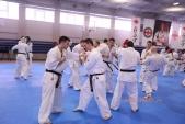 Зимняя школа Западно-Российской организации каратэ Киокусинкай-2018 (рис.18)