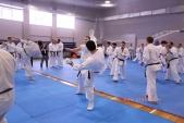 Зимняя школа Западно-Российской организации каратэ Киокусинкай-2018 (рис.19)
