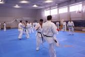 Зимняя школа Западно-Российской организации каратэ Киокусинкай-2018 (рис.22)