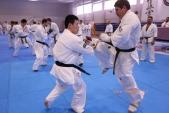 Зимняя школа Западно-Российской организации каратэ Киокусинкай-2018 (рис.23)