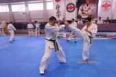 Зимняя школа Западно-Российской организации каратэ Киокусинкай-2018 (рис.28)