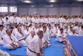 Зимняя школа Западно-Российской организации каратэ Киокусинкай-2018 (рис.43)